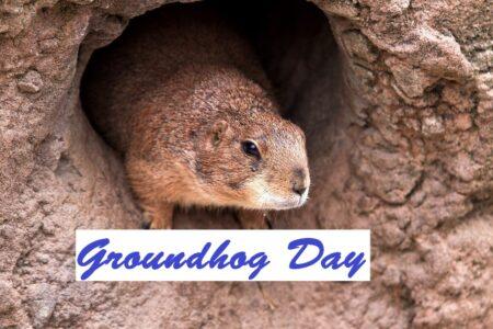 Groundhog Day, Pennsylvania