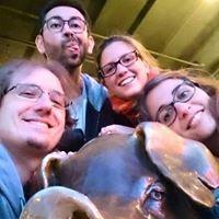 Rachel The Piggy Bank